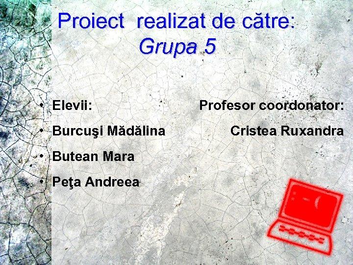 Proiect realizat de către: Grupa 5 • Elevii: • Burcuşi Mădălina • Butean Mara