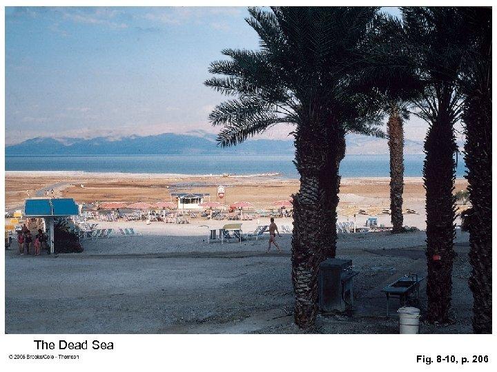 The Dead Sea Fig. 8 -10, p. 206
