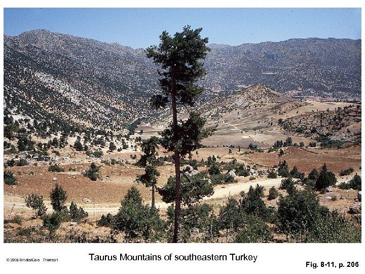 Taurus Mountains of southeastern Turkey Fig. 8 -11, p. 206