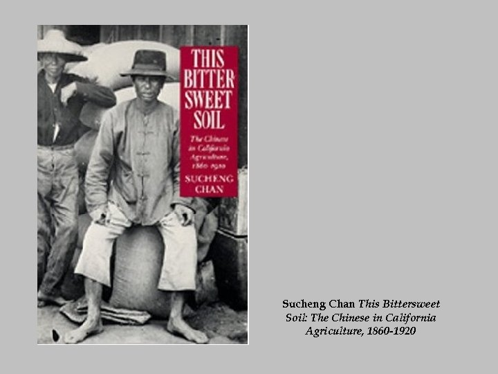 Sucheng Chan This Bittersweet Soil: The Chinese in California Agriculture, 1860 -1920