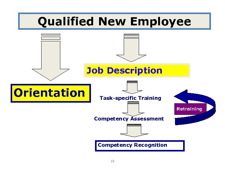 Qualified New Employee Job Description Orientation Task-specific Training Retraining Competency Assessment Competency Recognition 16