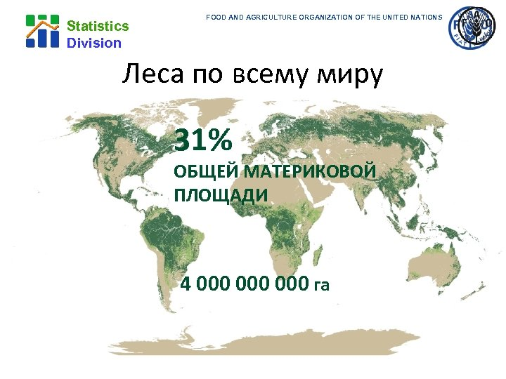 Statistics Division FOOD AND AGRICULTURE ORGANIZATION OF THE UNITED NATIONS Леса по всему миру