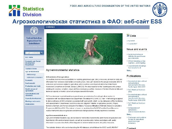 Statistics Division FOOD AND AGRICULTURE ORGANIZATION OF THE UNITED NATIONS Агроэкологическая статистика в ФАО: