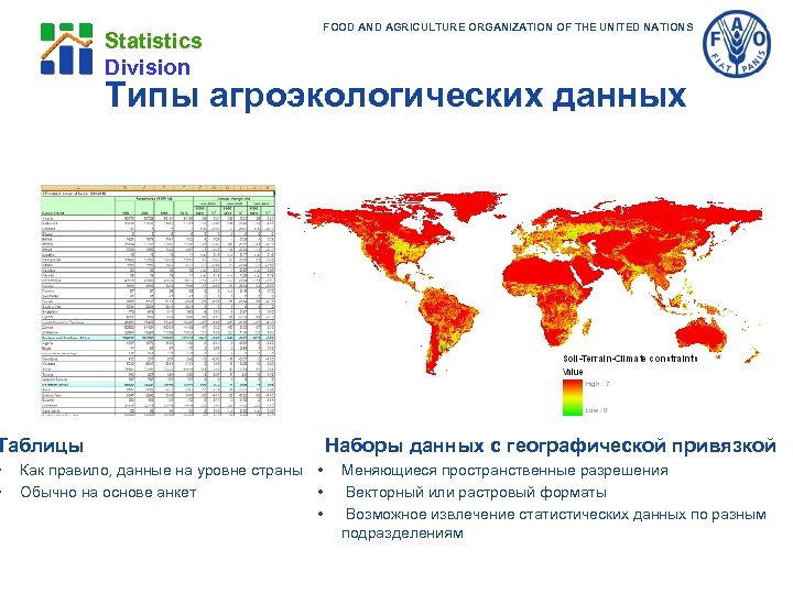 Statistics Division Типы агроэкологических данных Таблицы • • FOOD AND AGRICULTURE ORGANIZATION OF THE
