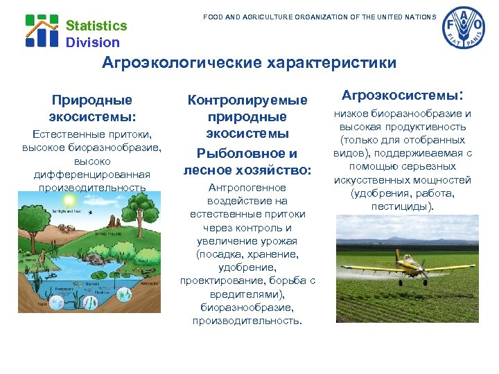 Statistics Division FOOD AND AGRICULTURE ORGANIZATION OF THE UNITED NATIONS Агроэкологические характеристики Природные экосистемы: