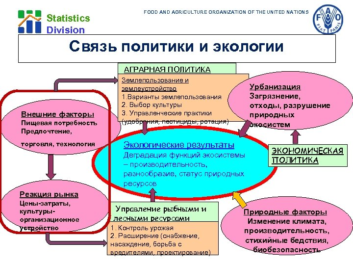 FOOD AND AGRICULTURE ORGANIZATION OF THE UNITED NATIONS Statistics Division Связь политики и экологии