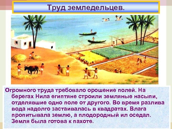 Труд земледельцев. Огромного труда требовало орошение полей. На берегах Нила египтяне строили земляные насыпи,