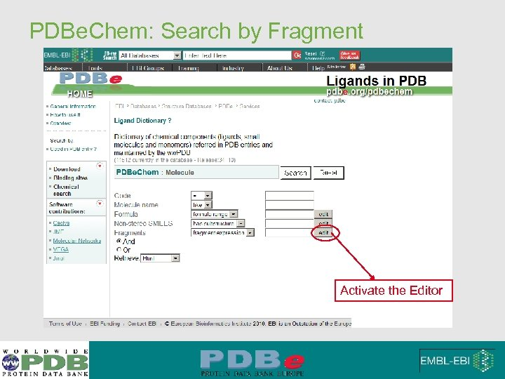 PDBe. Chem: Search by Fragment Activate the Editor
