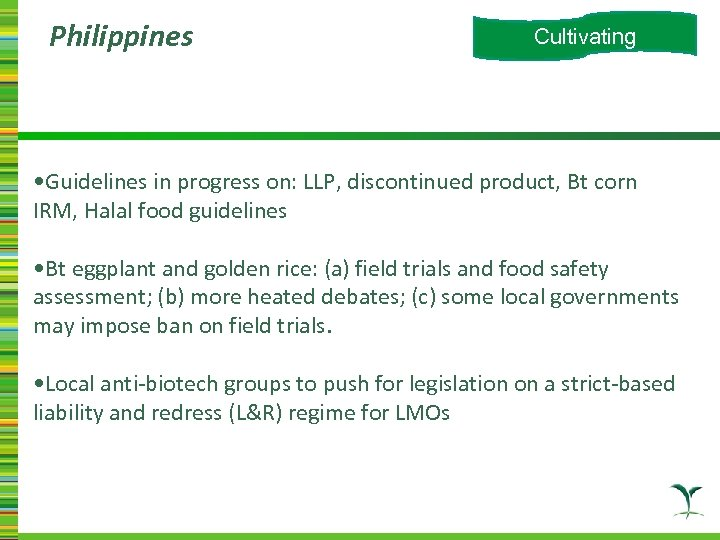 Philippines Cultivating • Guidelines in progress on: LLP, discontinued product, Bt corn IRM, Halal