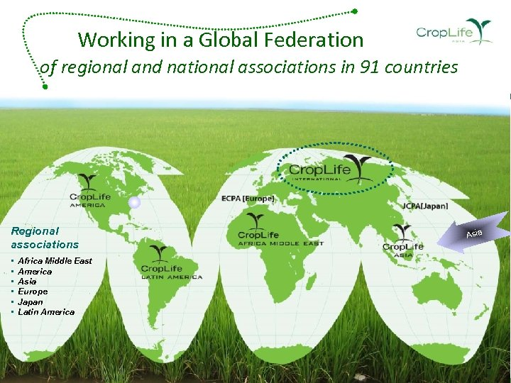 Working in a Global Federation of regional and national associations in 91 countries Regional