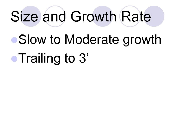 Size and Growth Rate l. Slow to Moderate growth l. Trailing to 3'