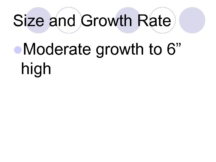 Size and Growth Rate l. Moderate high growth to 6""