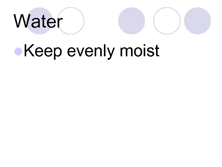 Water l. Keep evenly moist