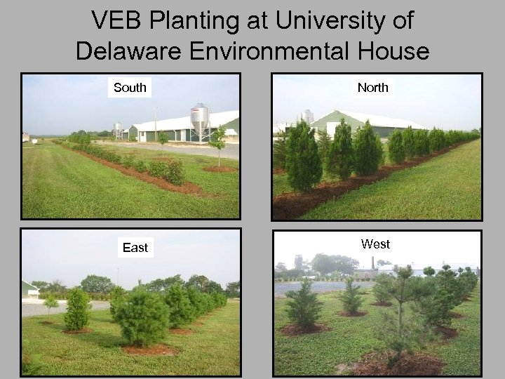 VEB Planting at University of Delaware Environmental House South North East West