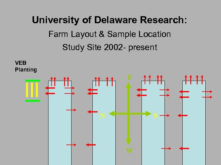 University of Delaware Research: Farm Layout & Sample Location Study Site 2002 - present