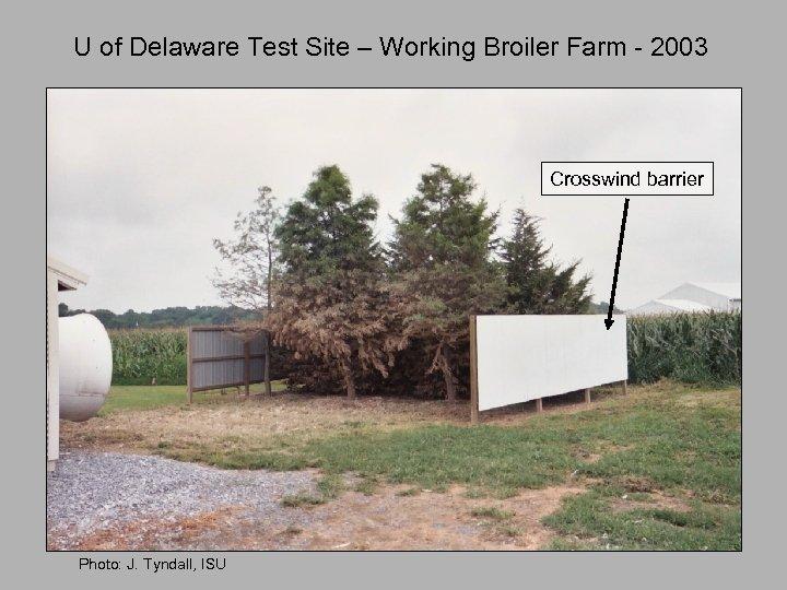U of Delaware Test Site – Working Broiler Farm - 2003 Crosswind barrier Photo: