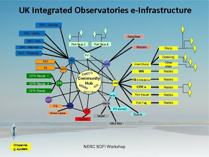 UK Integrated Observatories e-Infrastructure DAC – Species DAC – Bathy Satellites DAC - Fish