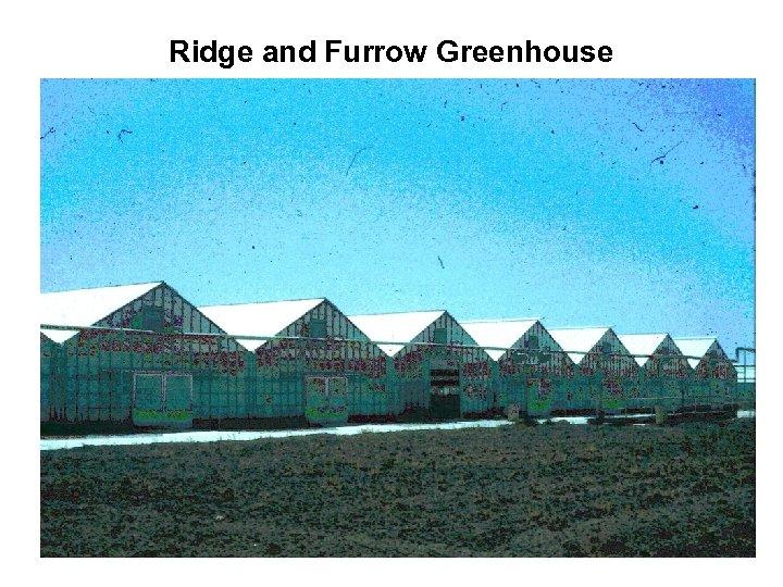 Ridge and Furrow Greenhouse