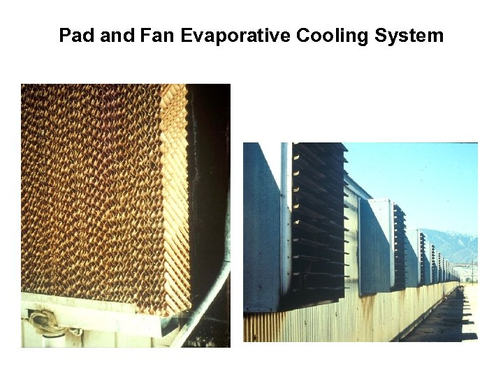 Pad and Fan Evaporative Cooling System