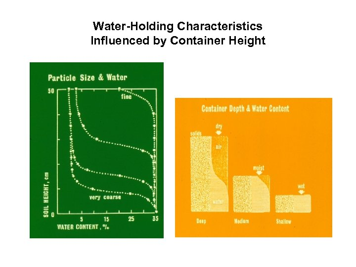 Water-Holding Characteristics Influenced by Container Height