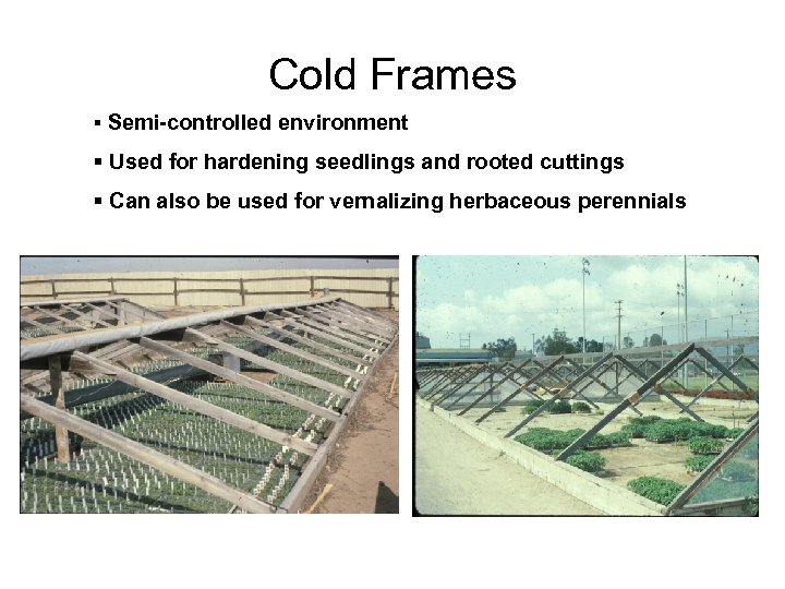Cold Frames § Semi-controlled environment § Used for hardening seedlings and rooted cuttings §