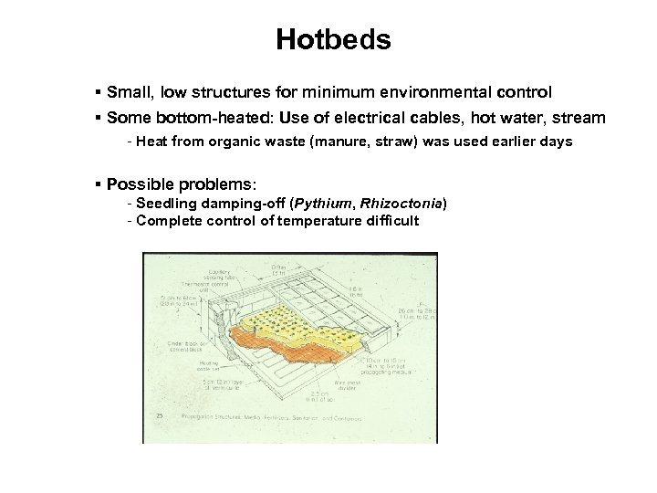 Hotbeds § Small, low structures for minimum environmental control § Some bottom-heated: Use of