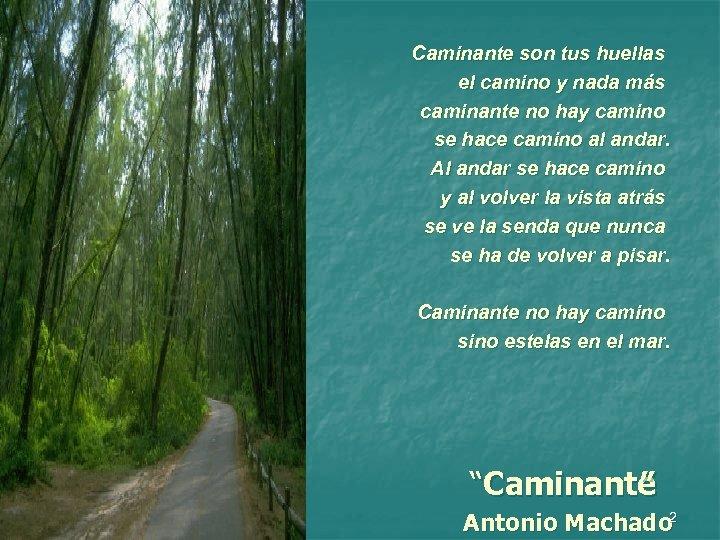 Caminante son tus huellas el camino y nada más caminante no hay camino se