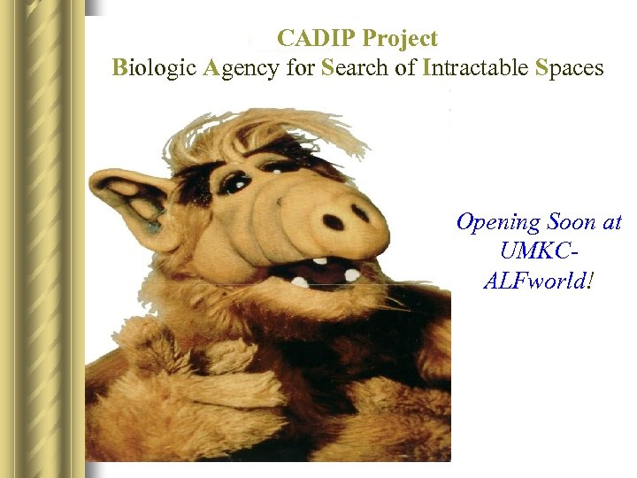 CADIP Project Biologic Agency for Search of Intractable Spaces Opening Soon at UMKCALFworld!