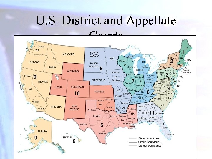 U. S. District and Appellate Courts