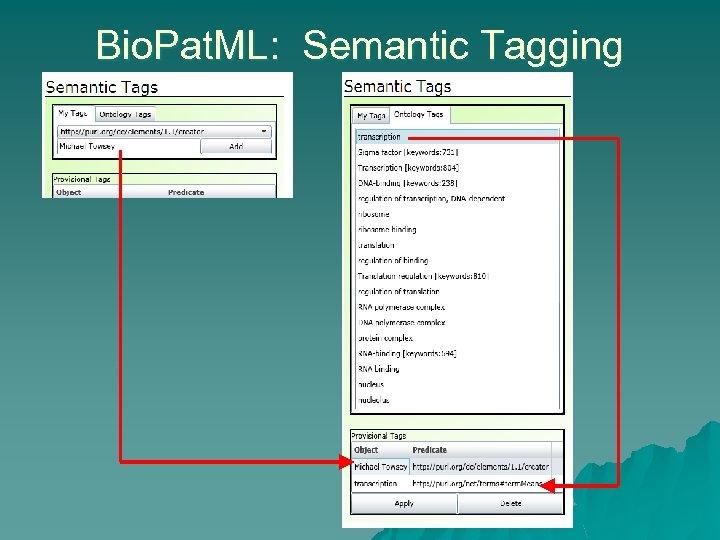 Bio. Pat. ML: Semantic Tagging