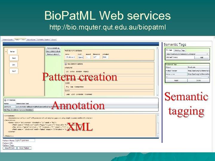 Bio. Pat. ML Web services http: //bio. mquter. qut. edu. au/biopatml Pattern creation Annotation