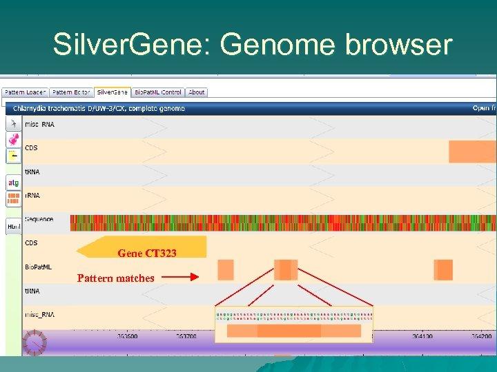 Silver. Gene: Genome browser Gene CT 323 Pattern matches