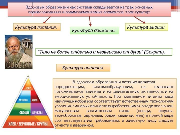 Здоровый образ жизни как система складывается из трех основных взаимосвязанных и взаимозаменяемых элементов, трех