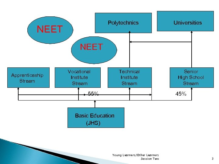 Polytechnics NEET Universities NEET Apprenticeship Stream Vocational Institute Stream Technical Institute Stream 55% Senior