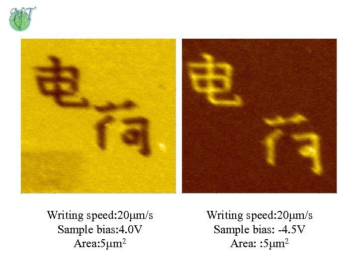 Writing speed: 20µm/s Sample bias: 4. 0 V Area: 5µm 2 Writing speed: 20µm/s