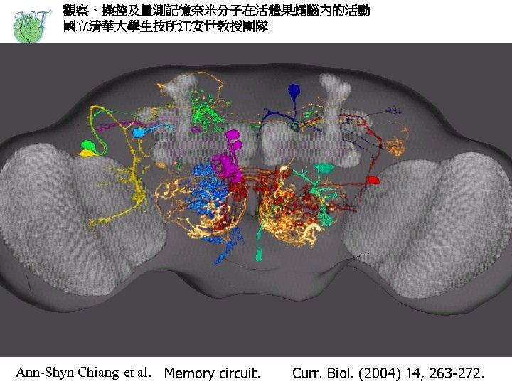 觀察、操控及量測記憶奈米分子在活體果蠅腦內的活動 國立清華大學生技所江安世教授團隊 Ann-Shyn Chiang et al. Memory circuit. Curr. Biol. (2004) 14, 263 -272.