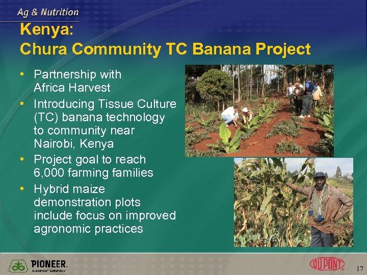Kenya: Chura Community TC Banana Project • Partnership with Africa Harvest • Introducing Tissue