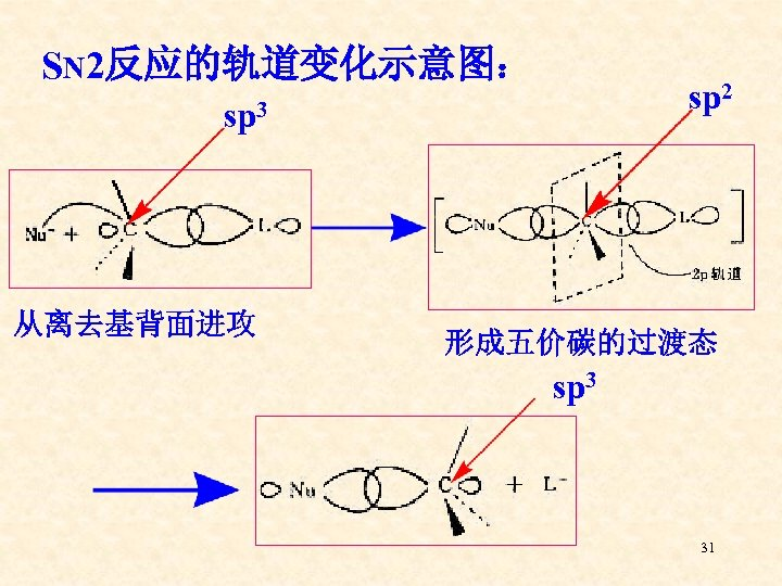SN 2反应的轨道变化示意图: sp 2 sp 3 从离去基背面进攻 形成五价碳的过渡态 sp 3 31