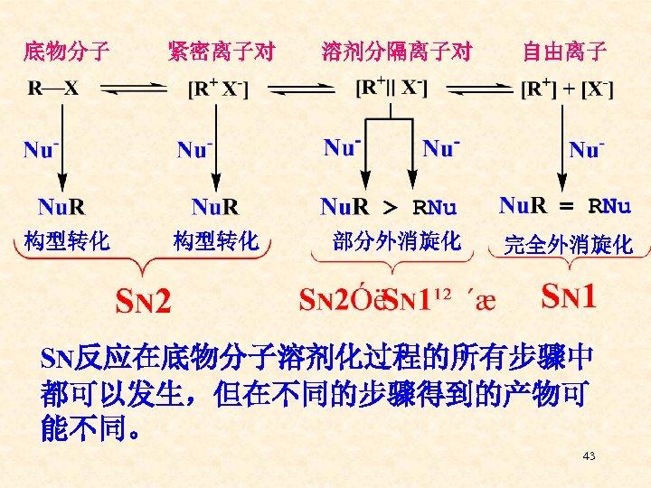 底物分子 紧密离子对 溶剂分隔离子对 自由离子 构型转化 部分外消旋化 完全外消旋化 SN反应在底物分子溶剂化过程的所有步骤中 都可以发生,但在不同的步骤得到的产物可 能不同。 43