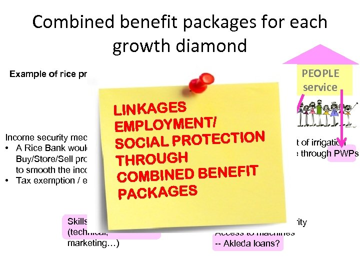 Combined benefit packages for each growth diamond Example of rice production Linkages with local