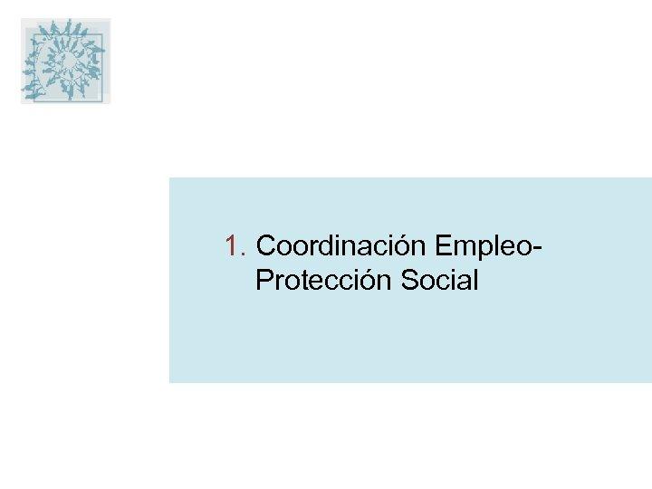 1. Coordinación Empleo. Protección Social
