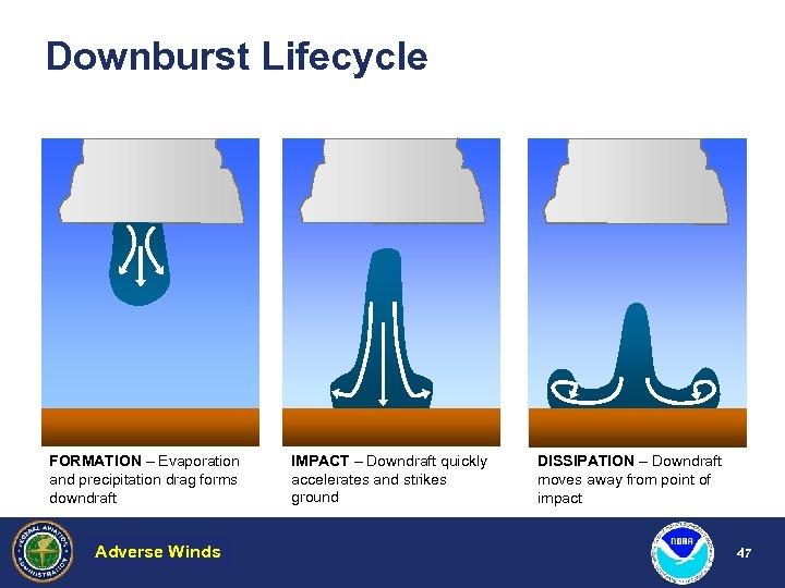 Downburst Lifecycle FORMATION – Evaporation and precipitation drag forms downdraft Adverse Winds Hazardous Weather