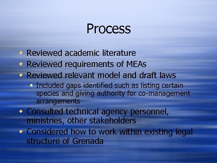 Process w Reviewed academic literature w Reviewed requirements of MEAs w Reviewed relevant model