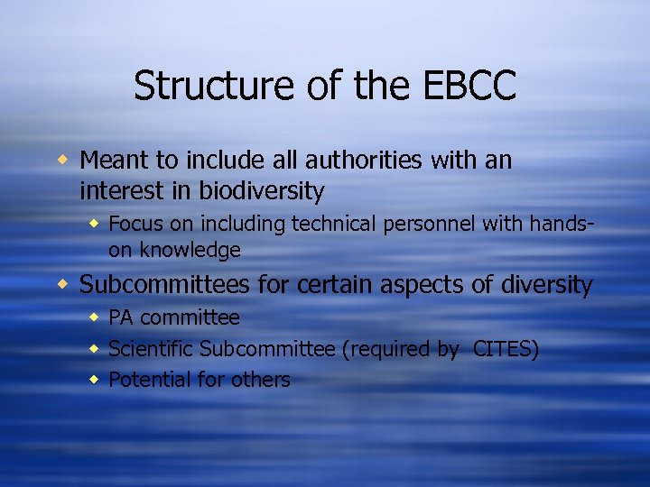 Structure of the EBCC w Meant to include all authorities with an interest in