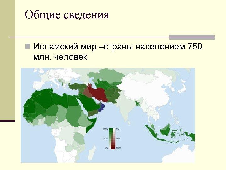 Общие сведения n Исламский мир –страны населением 750 млн. человек