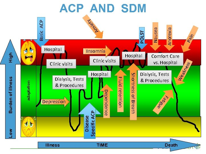 Disease Specific ACP adaptation Pai n Anorexia Nausea F e Low Dialysis, Tests &