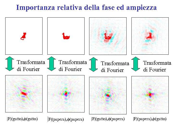 Importanza relativa della fase ed ampiezza Trasformata di Fourier |F|(gatto), f(gatto) Trasformata di Fourier
