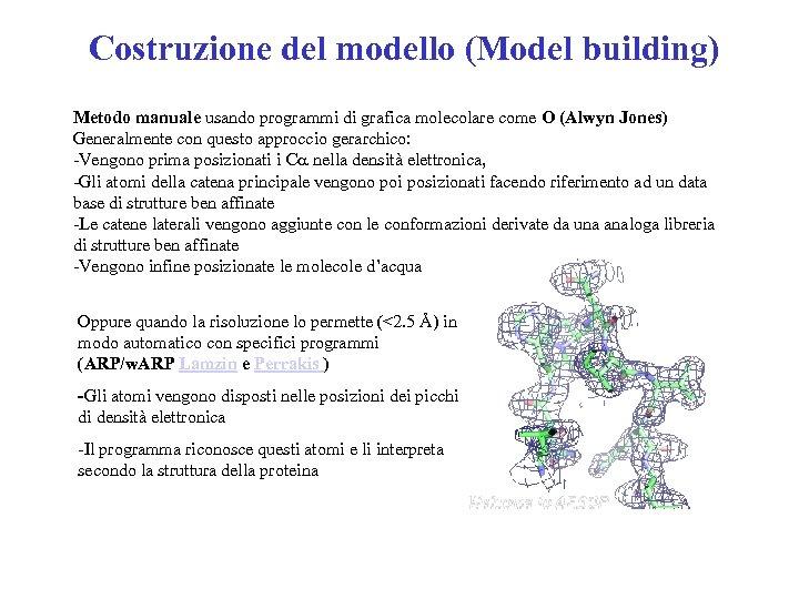 Costruzione del modello (Model building) Metodo manuale usando programmi di grafica molecolare come O