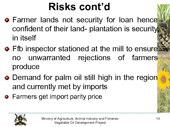 Risks cont'd Farmer lands not security for loan hence confident of their land- plantation