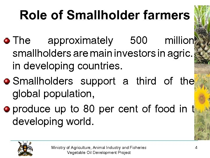 Role of Smallholder farmers The approximately 500 million smallholders are main investors in agric.